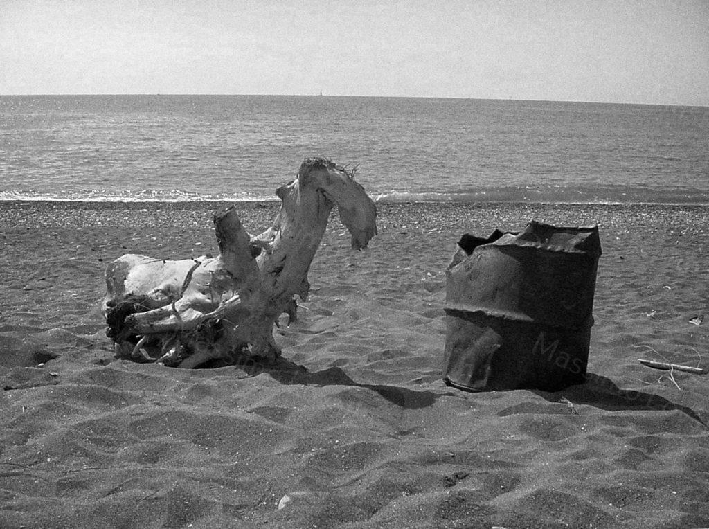 22/03/2002 Chiavari tronchi e oggetti sulla spiaggia
